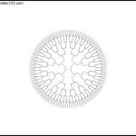 7 Generation Radial Family Tree PDF Format