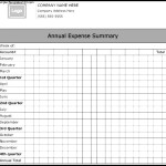 Annual Expense Summary Form Template