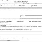 Blank Power of Attorney Form To Download