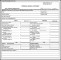 Business Financial Statement Form Example