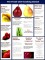 Cooking School Brochure Template