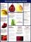 Cooking School Brochure Template
