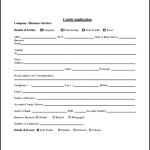 Credit Form Application Template