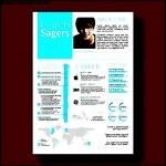 Custom Infographic Resume Design