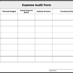 Expense Audit Form Template