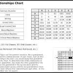 Family Relationships Chart Template
