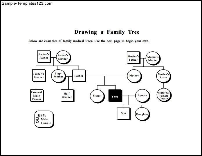 Family tree diagram template sample pdf sample templates sample family tree diagram template sample pdf ccuart Gallery