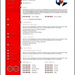 Flat and Clean Resume