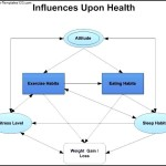 Health Influence Diagram Template