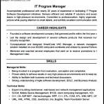 IT Program Manager Resume PDF