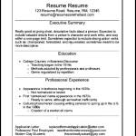 Infographic Resume Format PDF