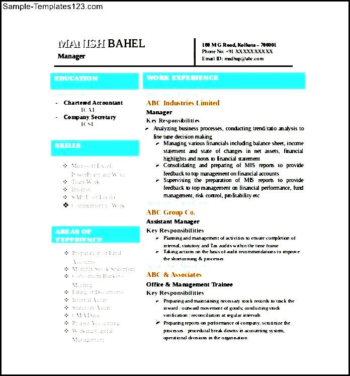 chartered accountant resume word format free