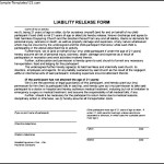 Liability Release Form Download In PDF