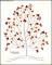 Long Family Tree Art on Cream Colour
