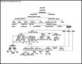 Mahathma Gandhi Family Tree Diagram Sample Format