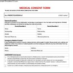 Medical Consent Form To Download