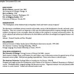 Modern CV Template Example