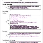 Modern CV Template PDF