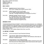 Modern CV Template Sample
