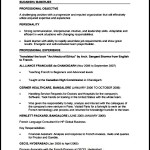 PDF Sample Professional CV Free Template