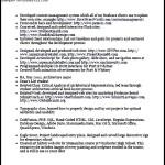 Php Developer Cv Template PDF