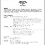 Printable Professional CV Template