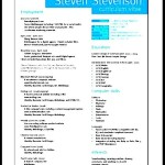 Professional Resume Layout Sample