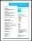 Professional Resume Layout Sample