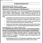 Program Manager PMO Director Resume PDF