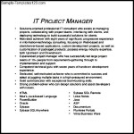 Project Manager CV Template PDF