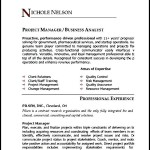 Project Manager Resume Sample PDF Sample