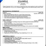 Resume For Computer Programmer