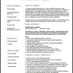 Risk Consultant Resume Sample