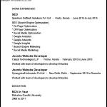 SEO Analyst Web developer PDF