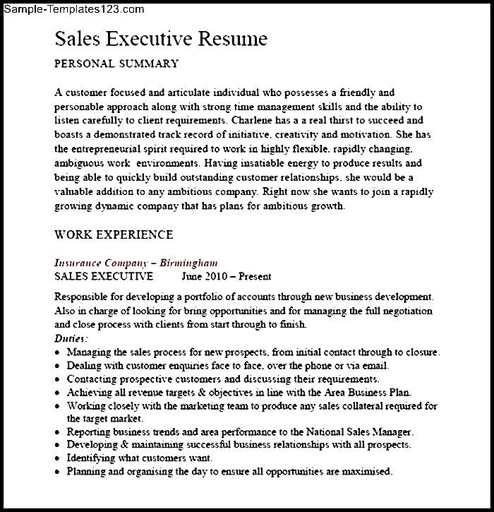 sales executive resume pdf sle templates