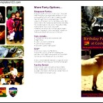 Sample Birthday Party At Cosley Zoo Itinerary Free PDF Template