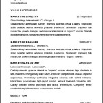 Sample Marketing Director Resume CV Template
