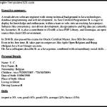 Sample Programmer Resume Template