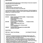 Simple CV Template Format