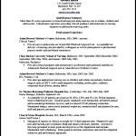 Simple CV Template PDF Sample