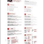 Simple Clean Resume Format