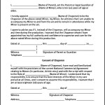 Simple Medical Authorization Form