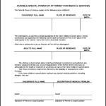 Special Power of Attorney Form Example