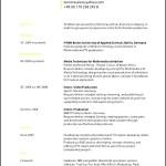 Standard CV Format