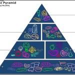 Food Pyramid Diagram Template