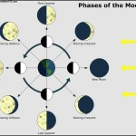 Phases of The Moon Astronomy Chart Template
