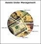 Pie Chart Example – Assets Under Management Template