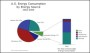 USA Energy Consumption Pie Chart Template