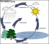 Water Cycle Diagram Template