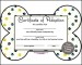 Adoption Certificate Template PDF Sample